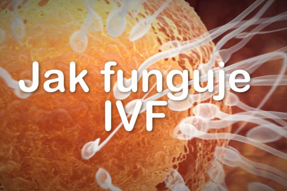 Jak funguje IVF
