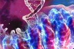 Dlouhodobá reprodukční rizika spojená se stárnutím žen – role mitochondrií?
