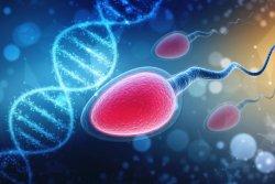 Nedostatek spermií ještě neznamená neplodnost